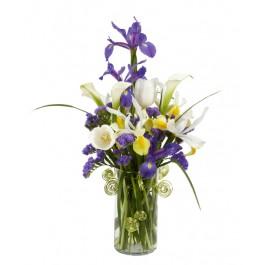 Bouquet Iris Bleu Magique