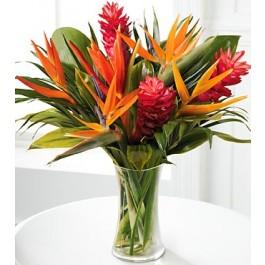 Bouquet tropical du Paradis