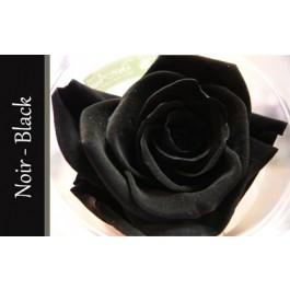 fleuriste lasalle florist nini fleuriste nini florist lasalle saint valentin valentine fun raire. Black Bedroom Furniture Sets. Home Design Ideas