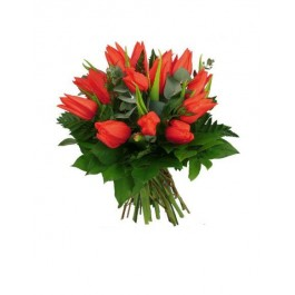 Bouquet Tulipes