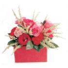 Explosion de tendresse pour St-Valentin