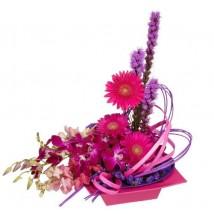 Amour Fleurs Fushia