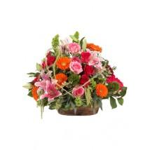 Fleurs Coloris