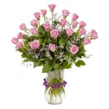 24 Roses Rose