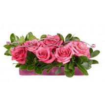 Roses Sanaa