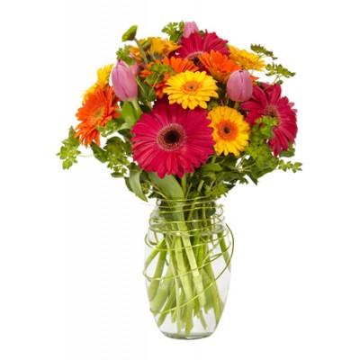 Fleuriste montr al lasalle florist montreal lasalle for Fleuriste jardin des fleurs