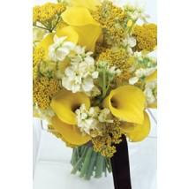 Bouquet ensolleillé