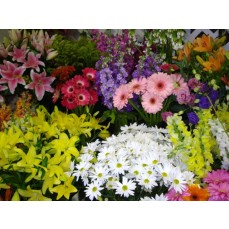 Bouquet of the market